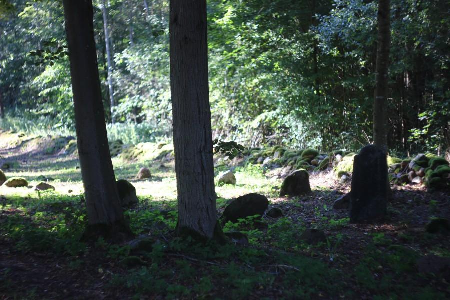 Cmentarz Tatarów w Kruszynianach (16)