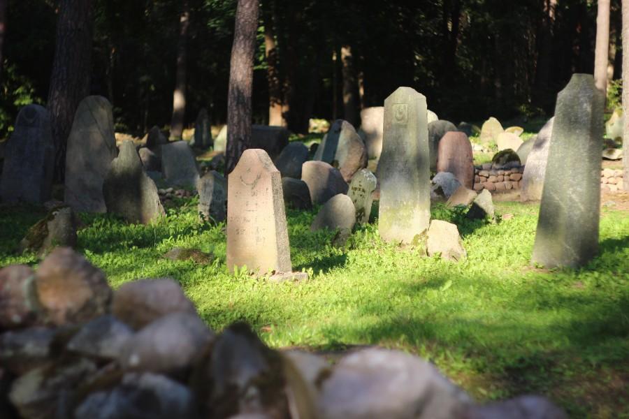 Cmentarz Tatarów w Kruszynianach (20)