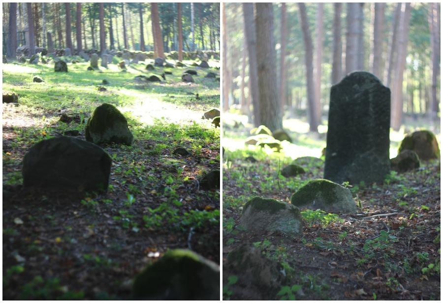 Cmentarz Tatarów w Kruszynianach (4)