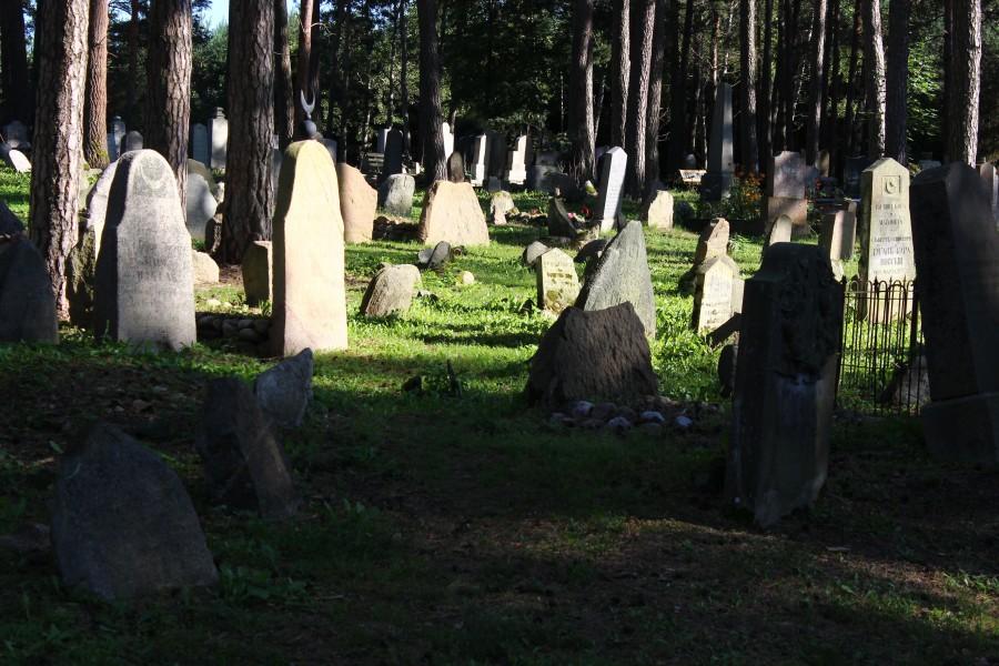 Cmentarz Tatarów w Kruszynianach (7)