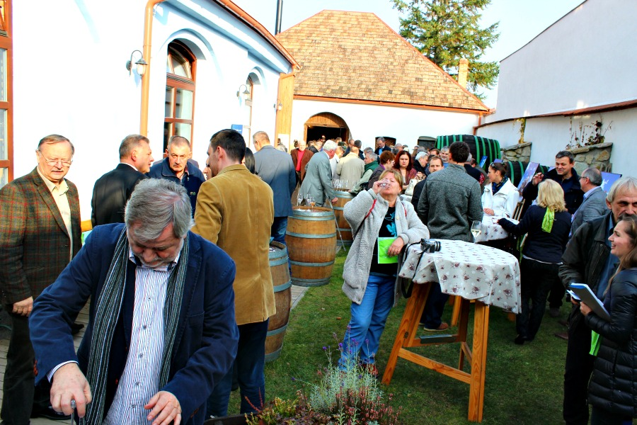 festiwal otwartych piwnic (3)