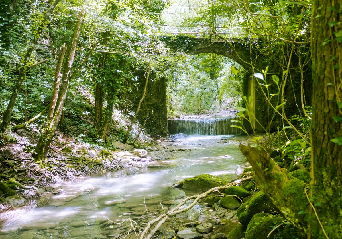 park narodowy Casenatico