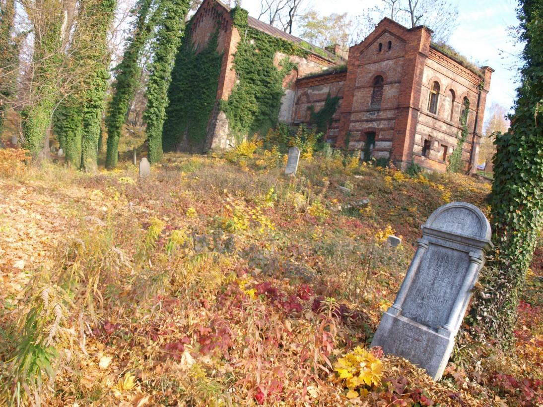 cmentarz-zydowski-cieszyn-1