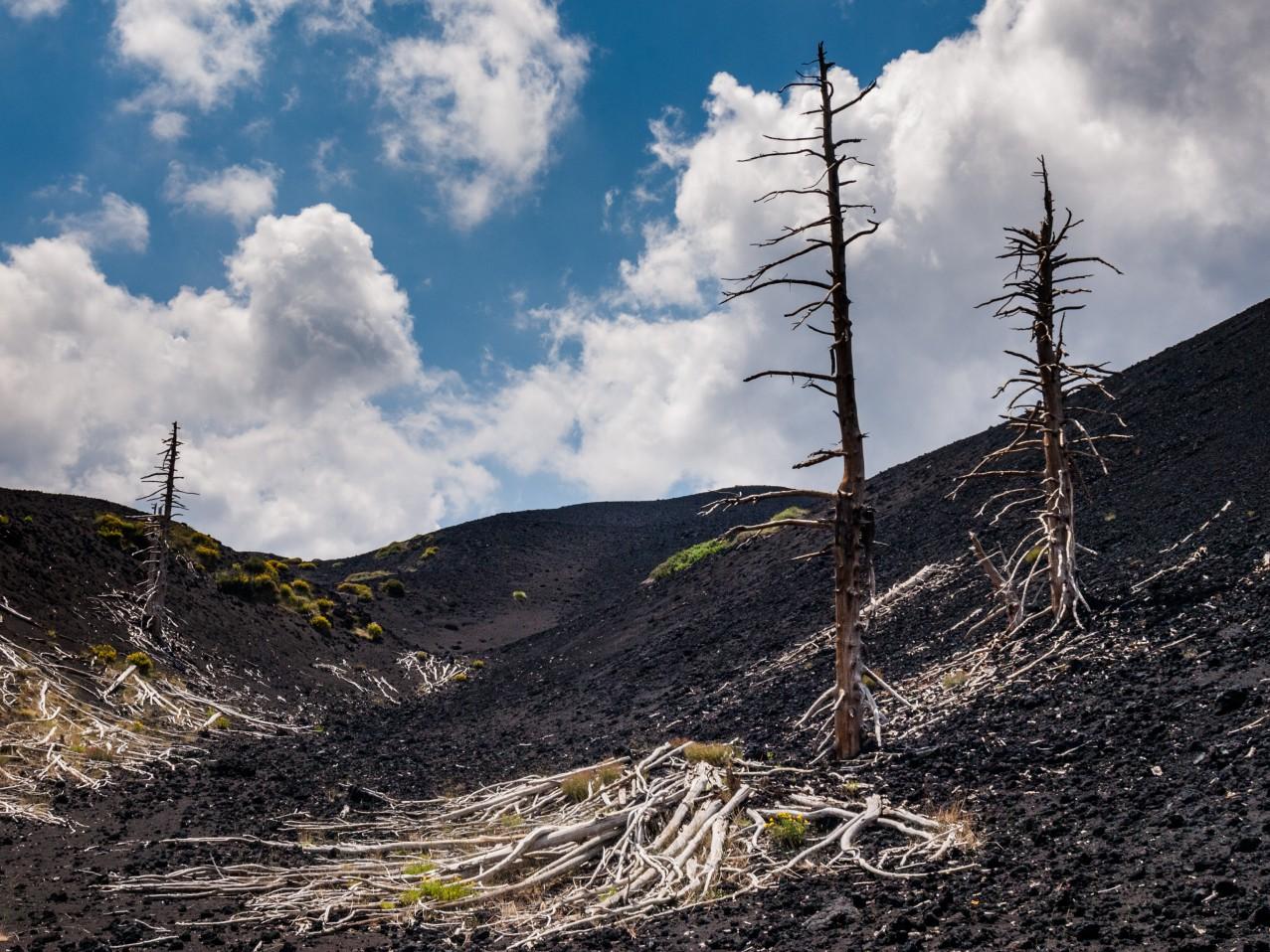Sycylia atrakcje wulkan Etna