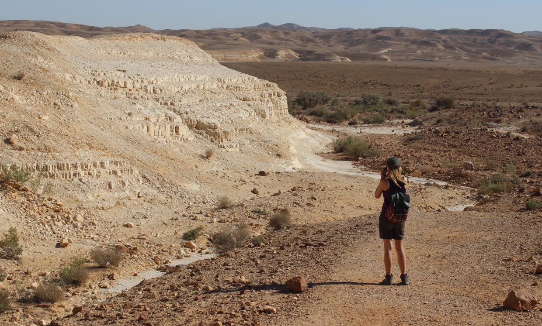 pustynia Negew