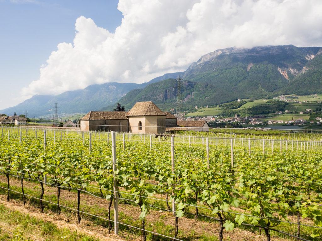 Bolzano trekking
