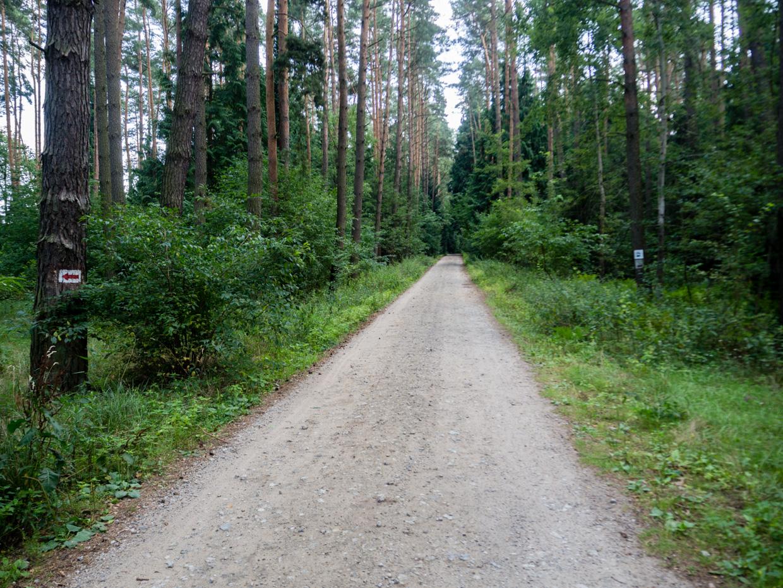 piesze szlaki w Przemęckim Parku Krajobrazowym
