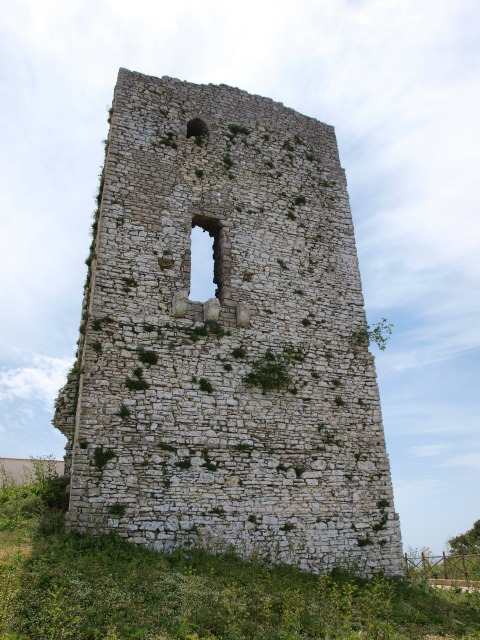 Bosco d'Alcamo
