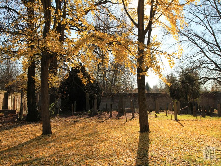 cmentarz (1)