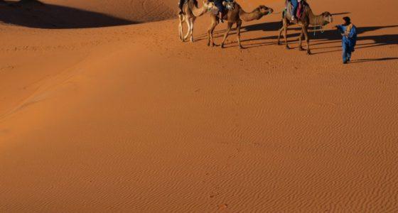 Maroko: jak wygląda wycieczka na pustynię