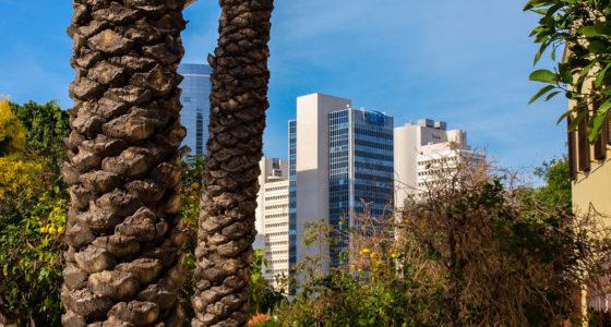 Dwa tygodnie w Izraelu – jak zaplanować idealny wyjazd?