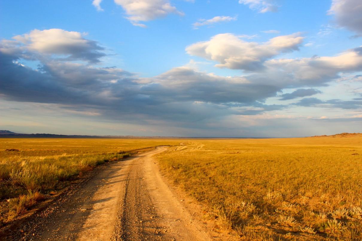 Kazachstan step