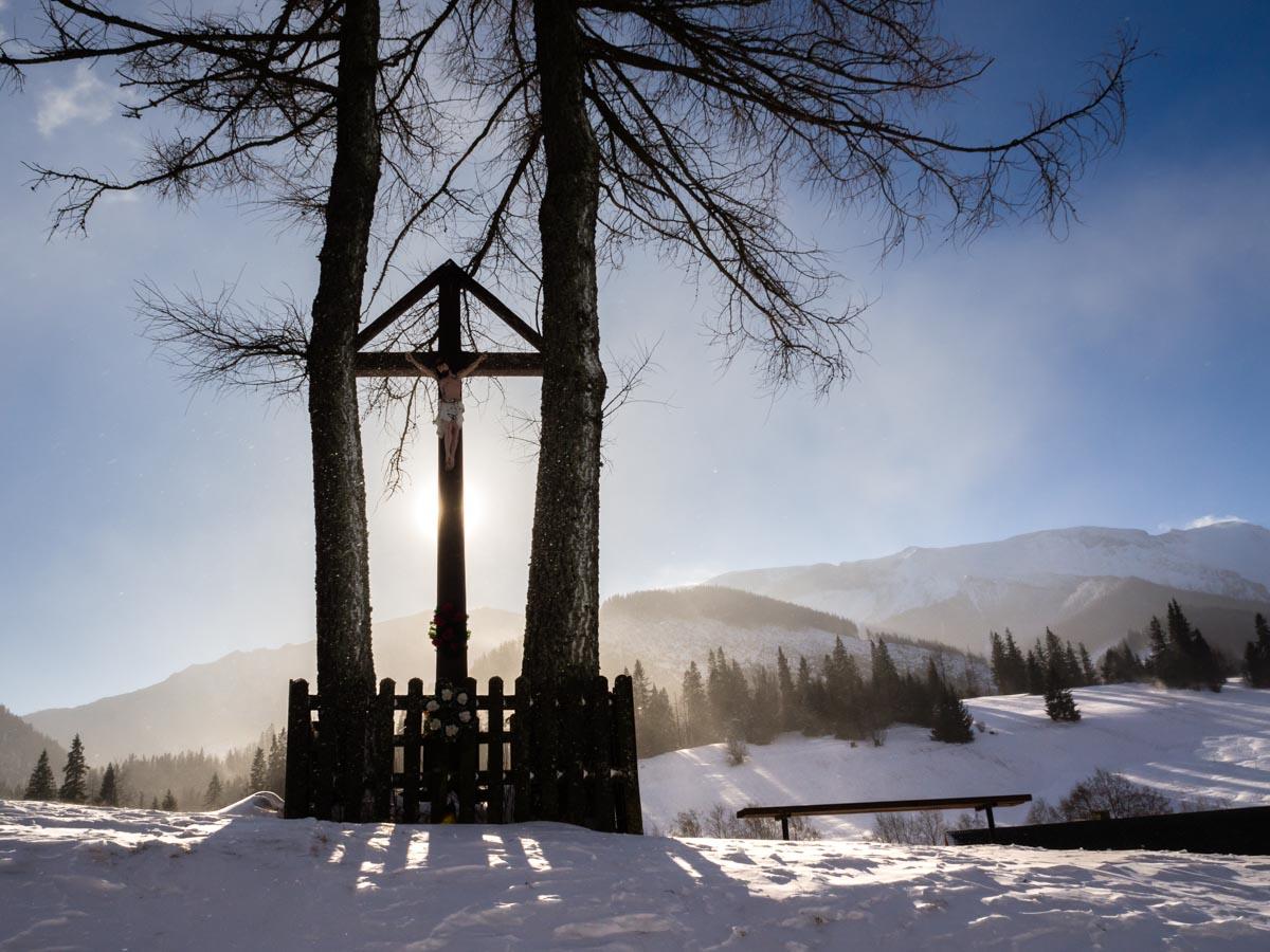 Zdziar zimą