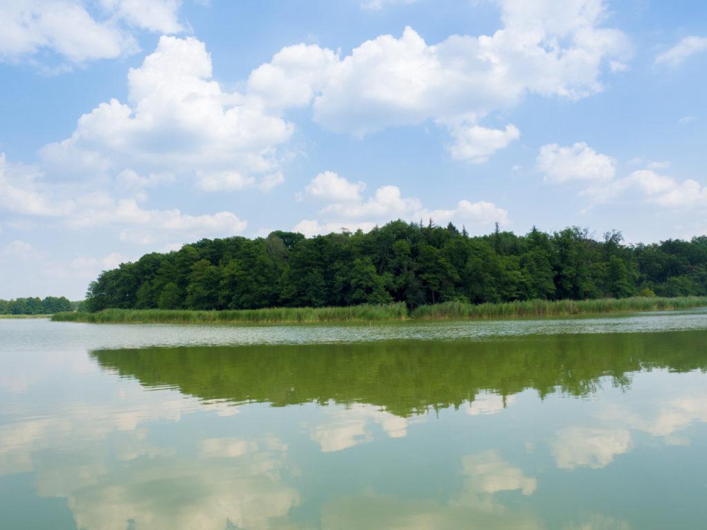 Wyspa Konwaliowa Przemecki park krajobrazowy