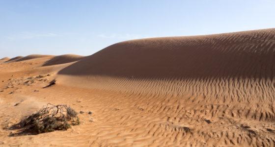 10 wspaniałych doświadczeń, które zapamiętam z Omanu