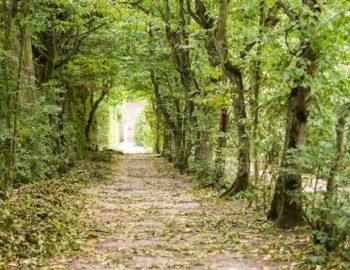 piesze szlaki