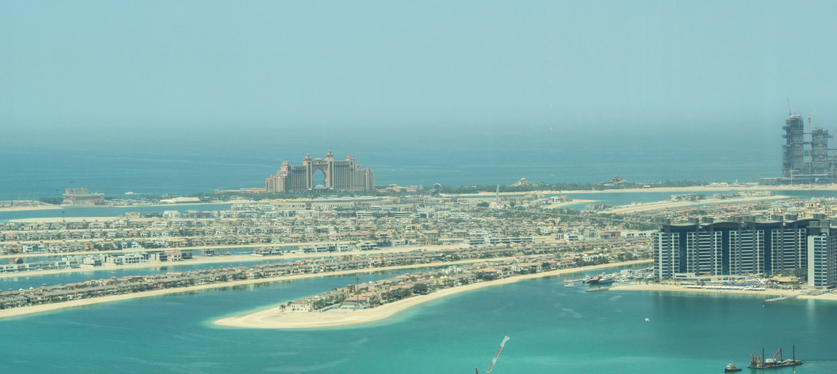 Dubaj wyspa palma