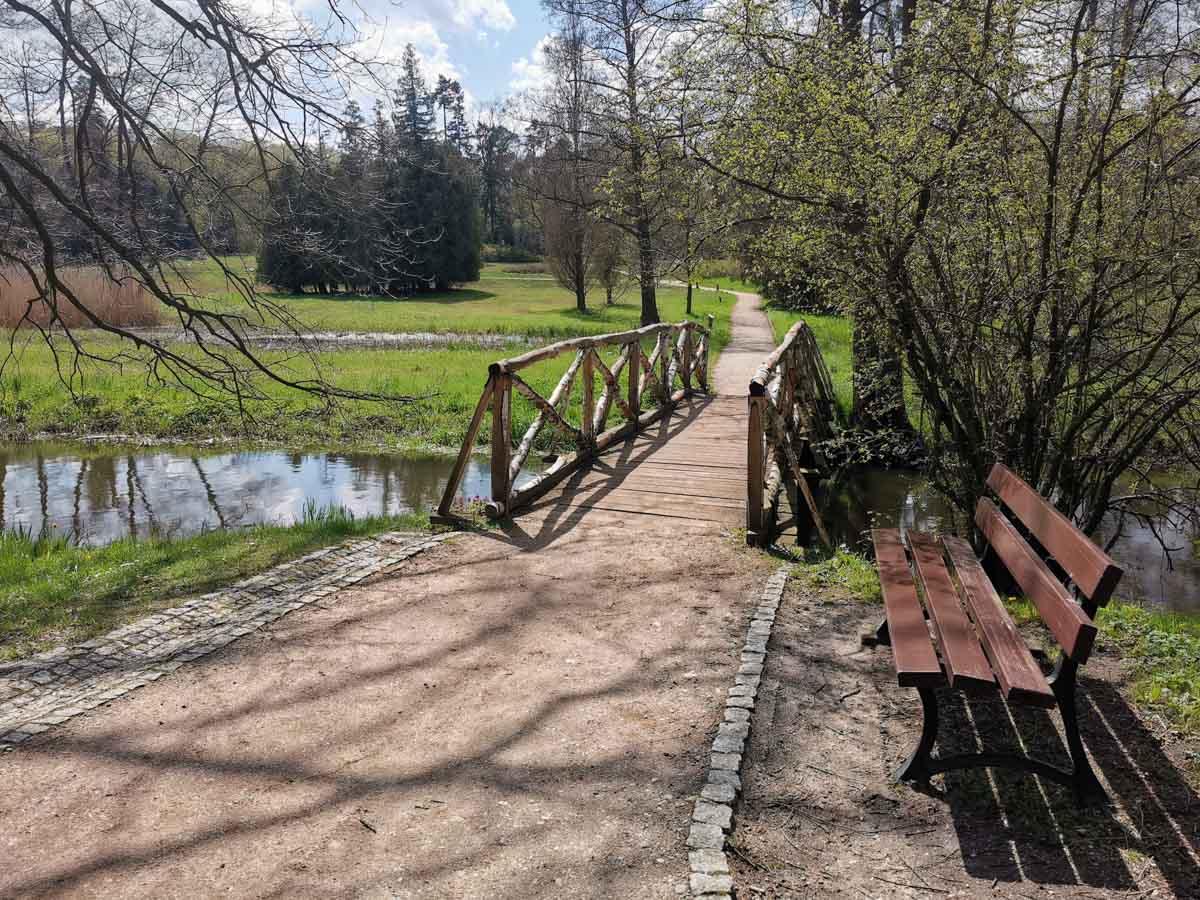arboretum w Gołuchowie